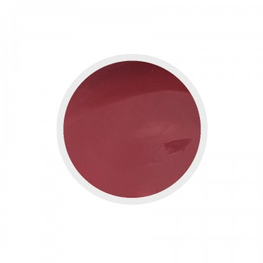 Gel colorato per unghie n.242 Red Pear