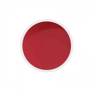 Gel colorato unghie n.242 Red Pear