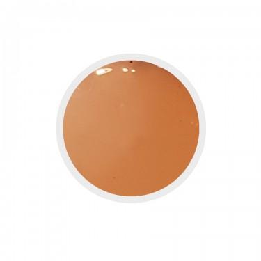 Gel colorato n.190 Copper Tan