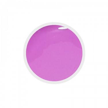Gel colorato n.179 Bodacious