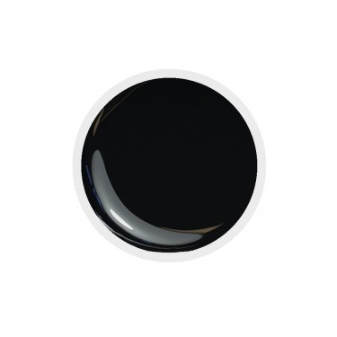 Color Paint uv gel n.21 Black