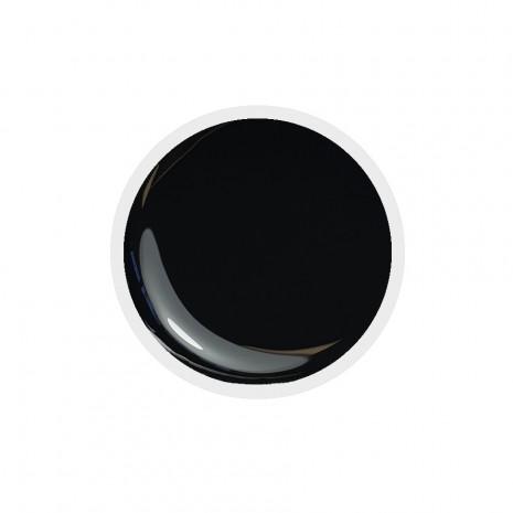 Color Paint uv gel n.21 Black