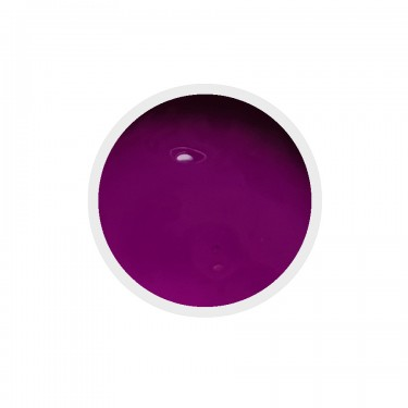 Color Paint uv gel n.23 Violet