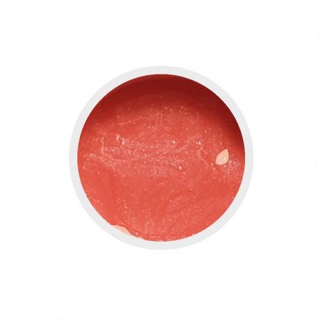 Color Paint UV GEL n.33 Leontine