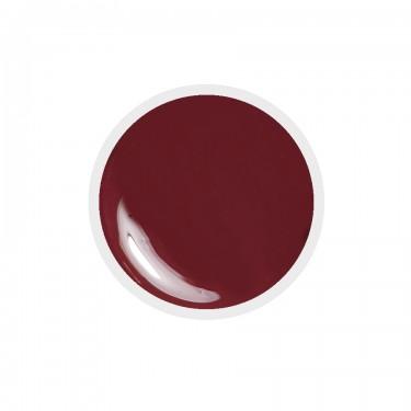 Gel colorato n.117 Marsala