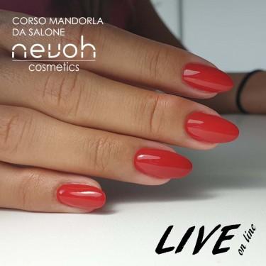 LIVE Corso Mandorla da Salone
